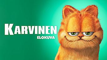 Karvinen (2004)