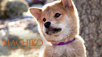 Hachiko - Tarina uskollisuudesta (2009)