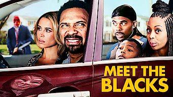 Meet the Blacks (2016)