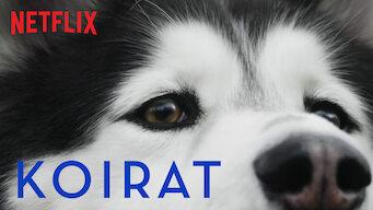 Koirat (2018)