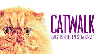 Catwalk: Kertomuksia kissanäyttelyistä (2018)