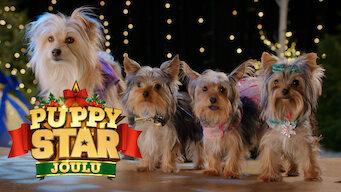 Puppy Star Joulu (2018)