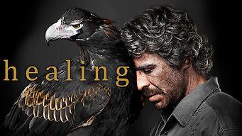 Healing (2014)